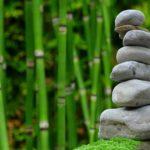 Piękny oraz ładny zieleniec to zasługa wielu godzin spędzonych  w jego zaciszu w trakcie jego pielegnacji.